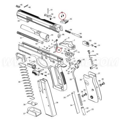 CZ SP-01 Securing Screw