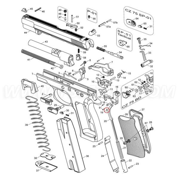 Фиксатор оси курка CZ 75 SP-01