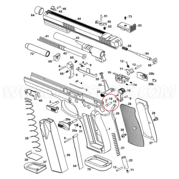 CZ 75 TS Hammer Pin